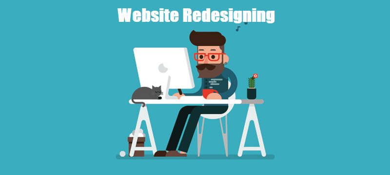website redesigning meerut