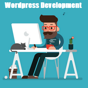 wordpress development in meerut