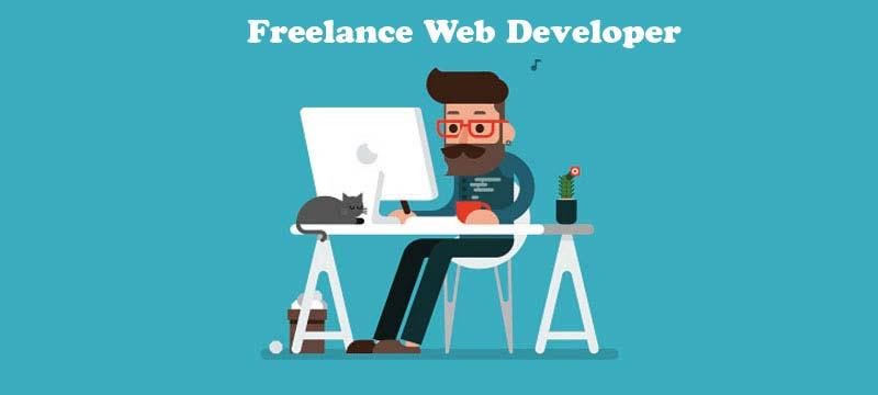freelance web developer meerut